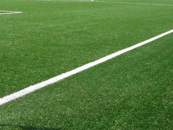 giardinaggio-su-campi-da-calcio-casalgrande