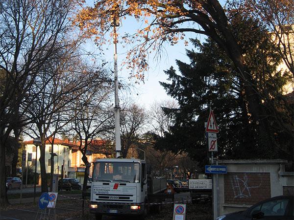 Impresa-di-giardinaggio-per-potature-Reggio-Emilia