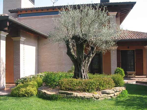 Preventivi-realizzazione-giardini-Sassuolo