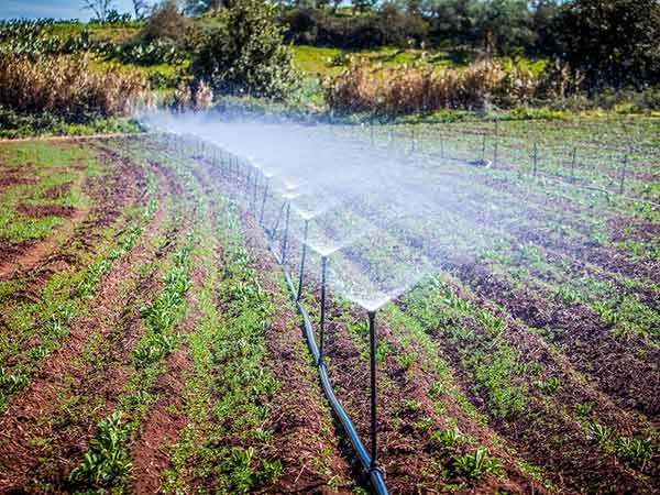 Sistema di irrigazione a pioggia cemento armato precompresso for Sistema irrigazione