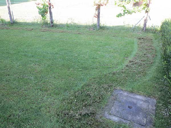 servizi-di-giardinaggio-per-riseminare-prato-reggio-emilia