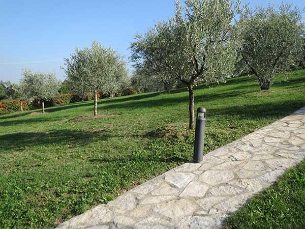 sistemi-di-irrigazione-per-frutteti-reggio-emilia-casalgrande