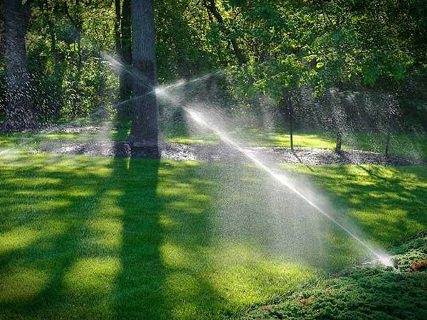impianti-di-irrigazione-automatici-per-parchi-reggio-emilia